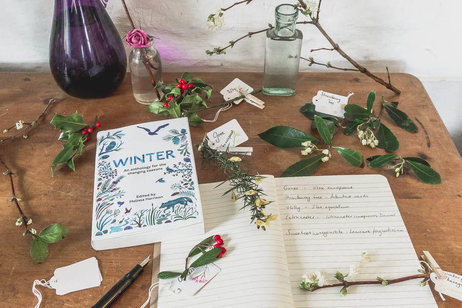 Botanical desk nature diary winter