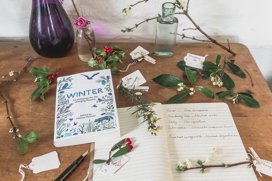 Botanical desk nature diary winter