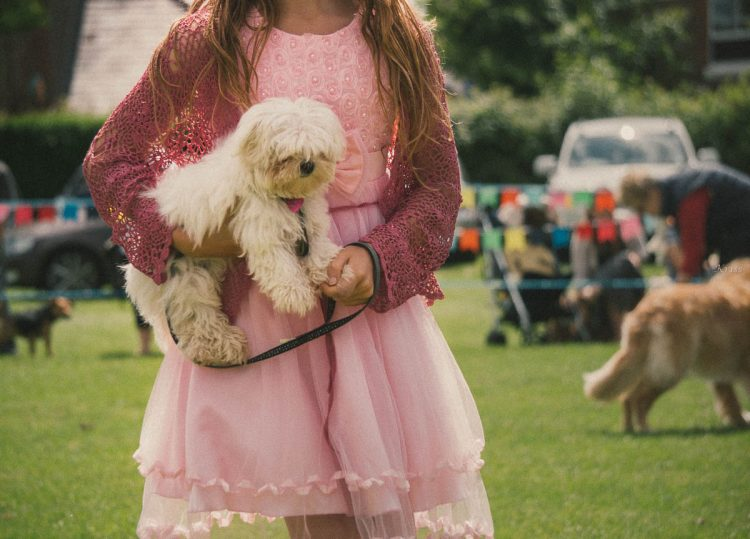 british country fair girl dog