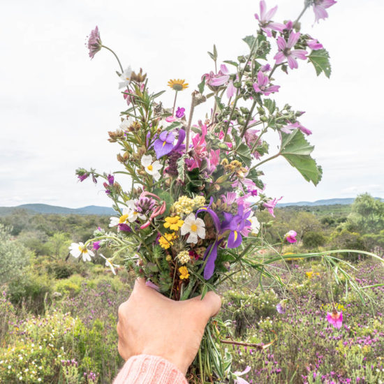 Wild Flowers Hand Algarve