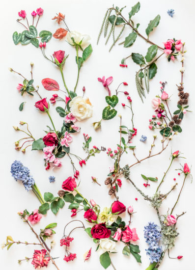 winter classic flowers botanical art